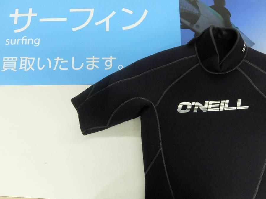 【TFスポーツ】オニールのシーガルが入荷!
