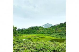 番外編!孤高の山行報告3 〜火打山、妙高山2座日帰り〜【前編】