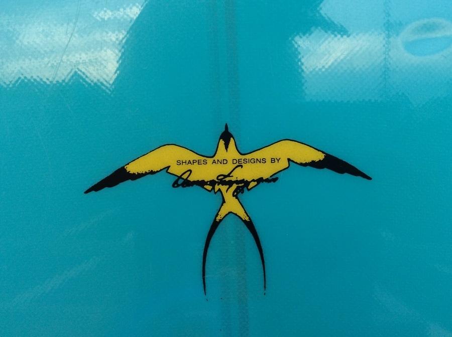 ドナルドタカヤマの柏 松戸 サーフィン
